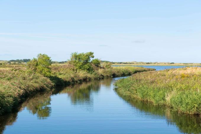 Landscape water nature Borkum island _shutterstock_177412079_klein