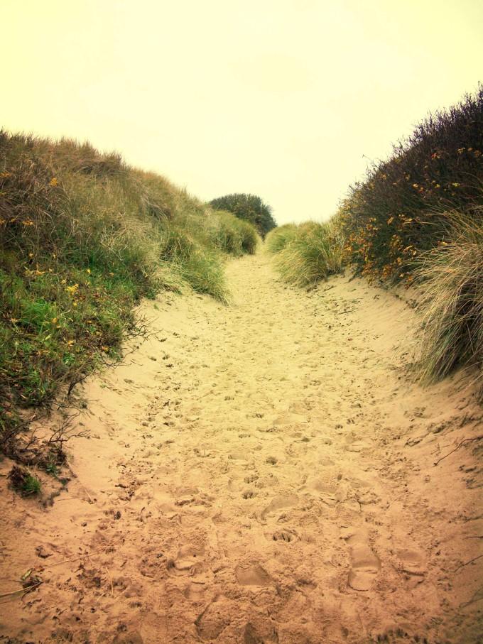 Lonely footpath through a beach dune landscape on Sylt._shutterstock_389077726_klein