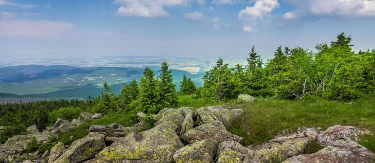 Mountains and forest of Harz in the sunlight, Germany_shutterstock_509207851_klein
