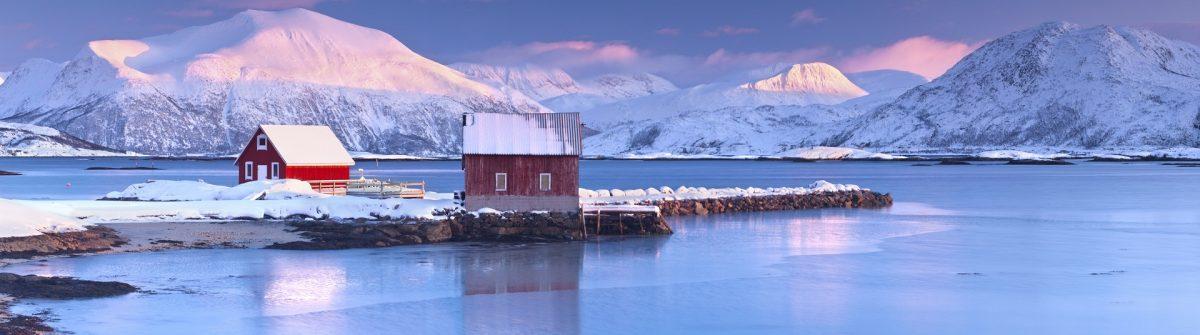Arctic Rorbeur