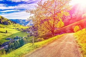 Reiseziele Oktober_Wellnessurlaub_Münstertal_Schwarzwald