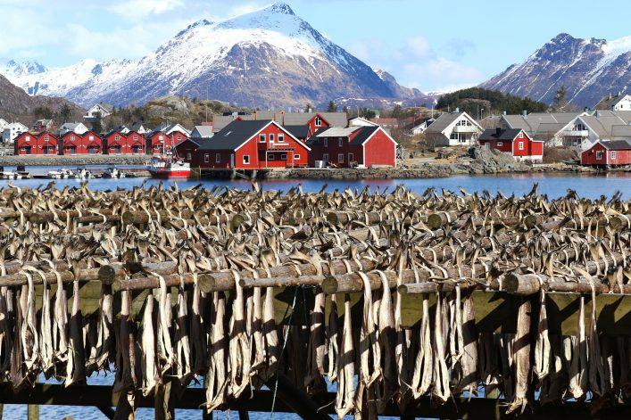 stockfisch norwegen lofoten shutterstock_631328540