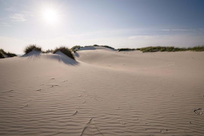 Summer day at the beach_shutterstock_522661648_klein
