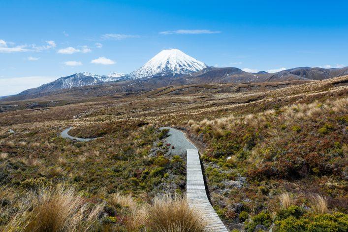 Neuseeland Tongariro Nationalpark shutterstock_523695187