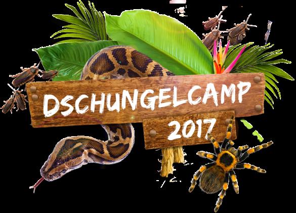 Dschungelcamp 2017
