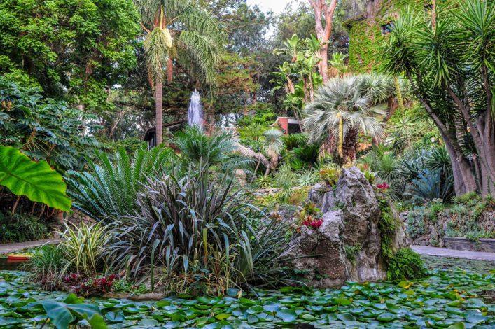 Ischia Garten