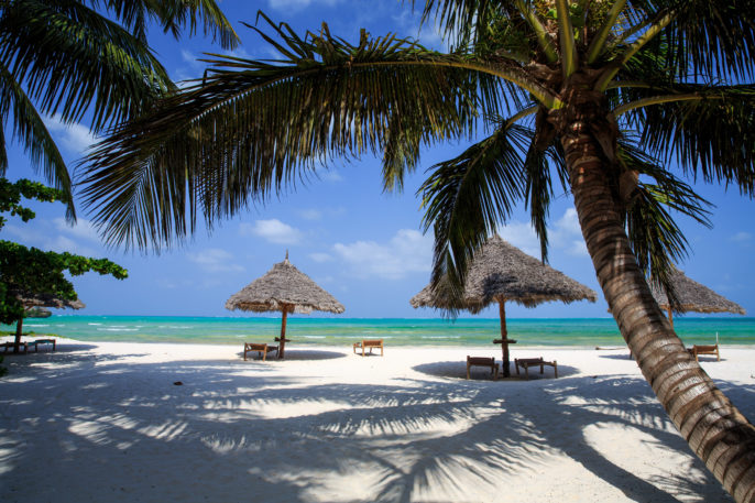 Zanzibar Umbrellas and palm trees on the Beach_shutterstock_384767065