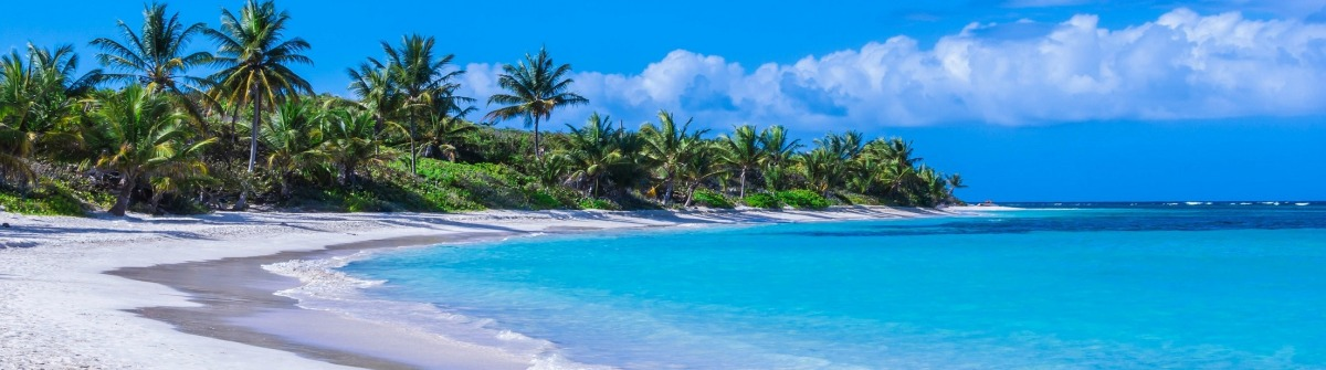 Beautiful white sand Caribbean beach
