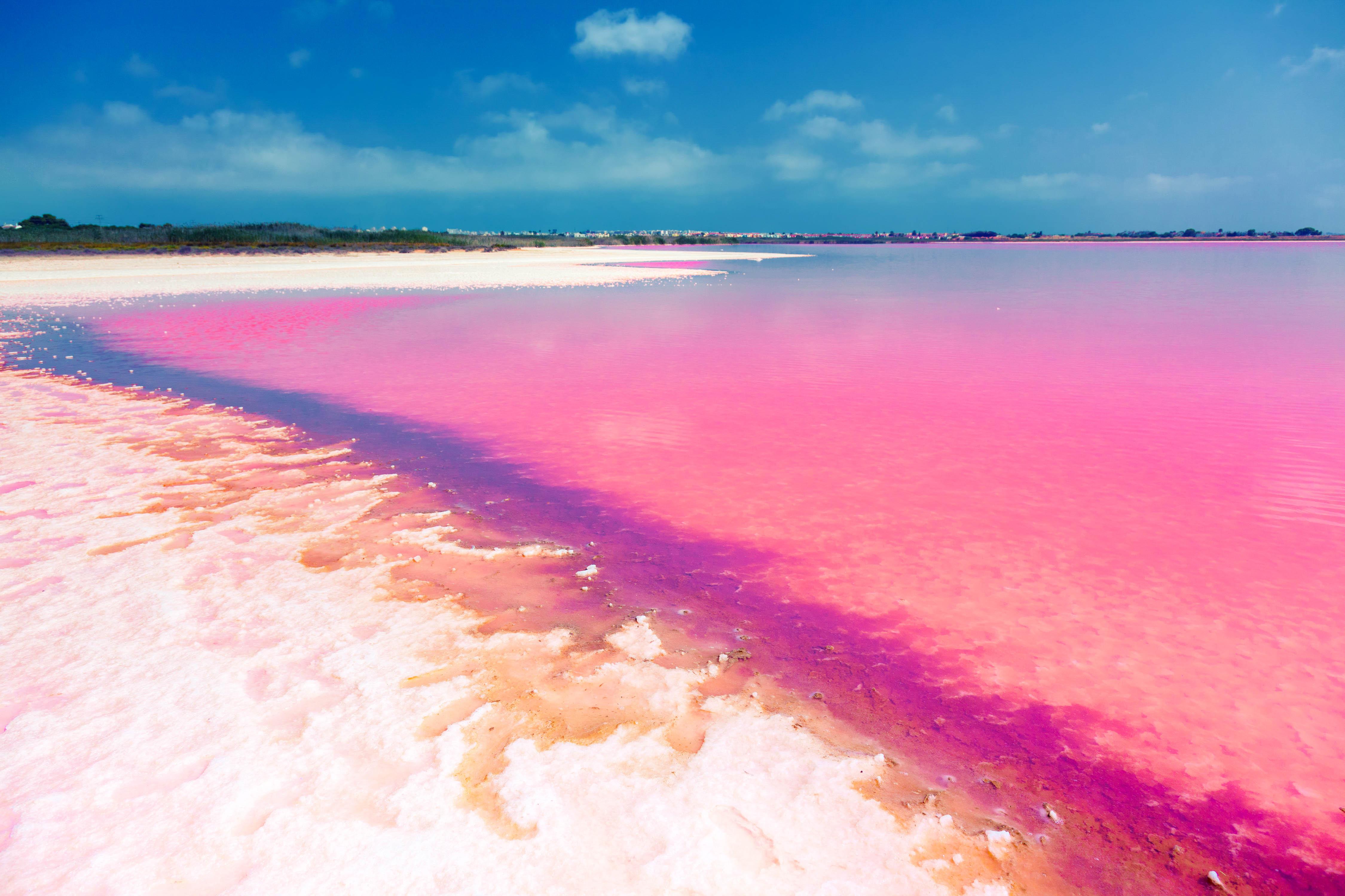 pink lakes rosa seen gibt es nicht nur im m rchen urlaubsguru. Black Bedroom Furniture Sets. Home Design Ideas