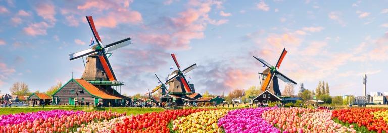 Bewundert die Tulpenblüte in Holland und besucht den bezaubernden Keukenhof!