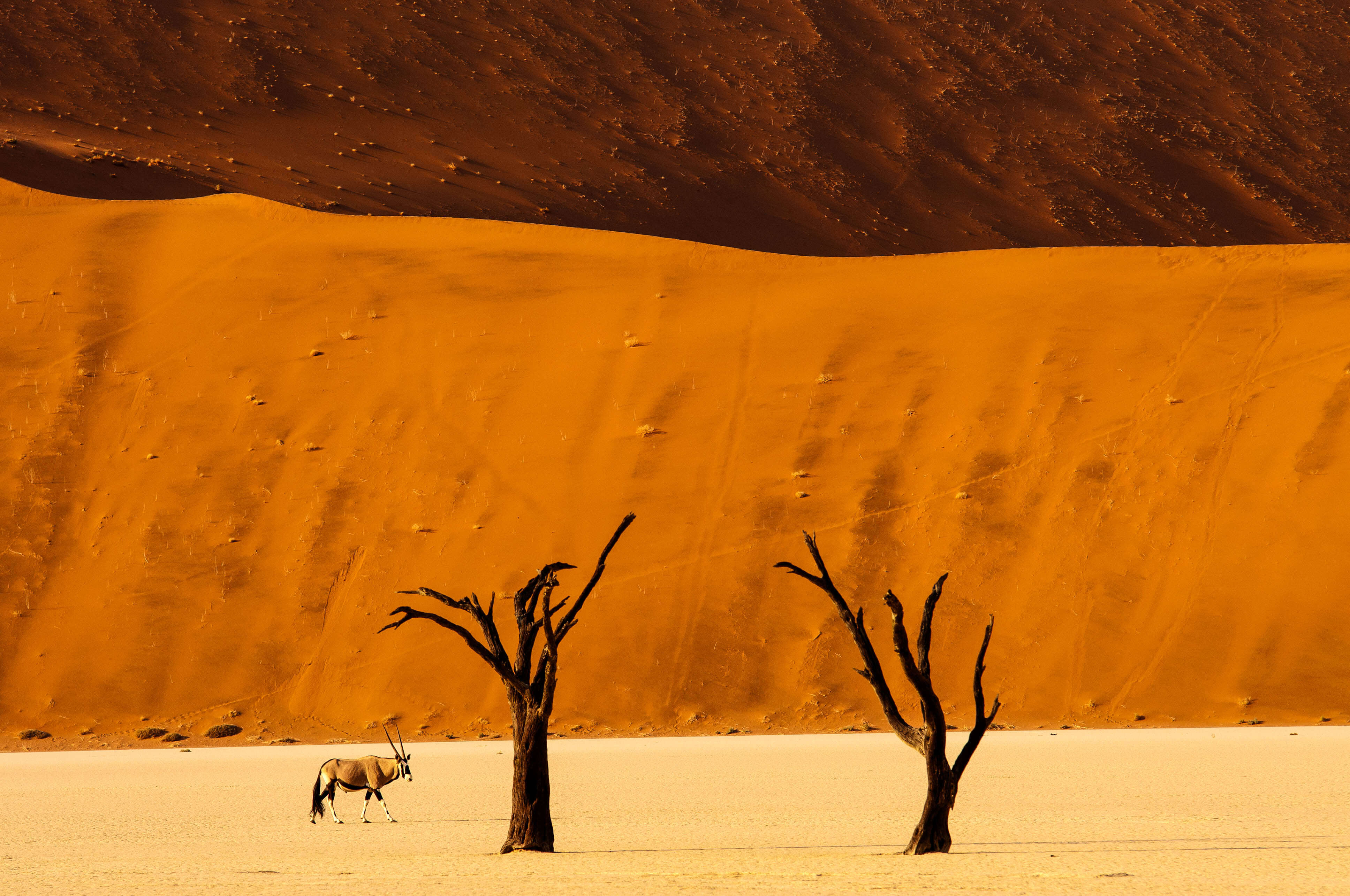 Namibia Namib-Naukluft-Nationalpark