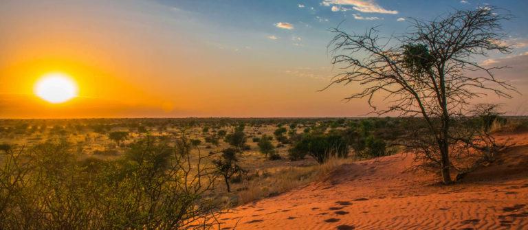 Namibia Kalahari-Wüste