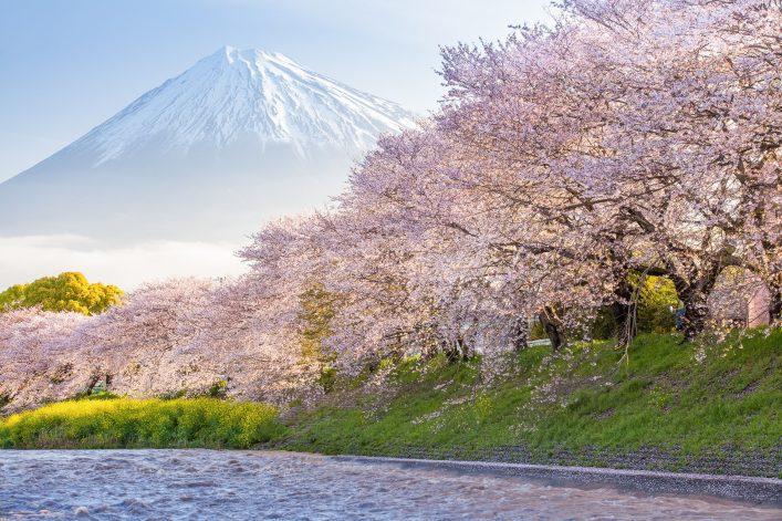 Günstig durch Japan Tipps, Sehenswürdigkeiten, Fuji Five Lakes