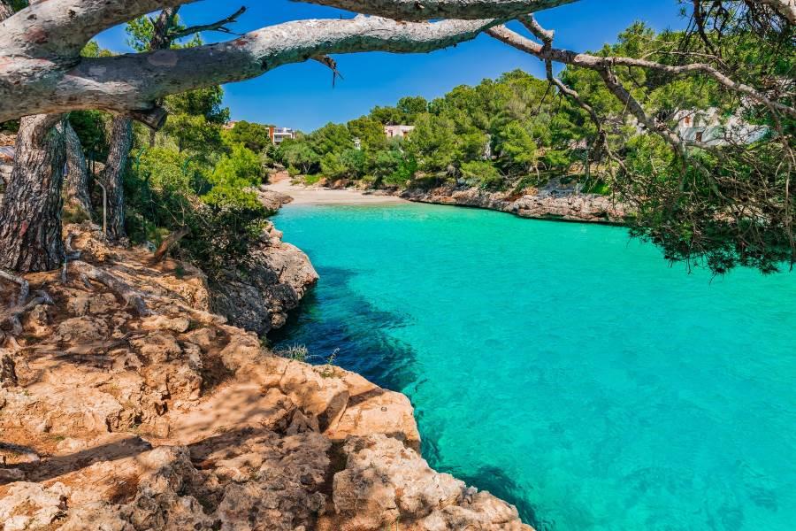blick auf die Bucht in Cala D'or