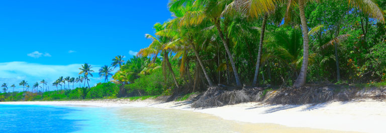 Tropical paradise relax Summer dreamscape: turquoise caribbean beach, White sand