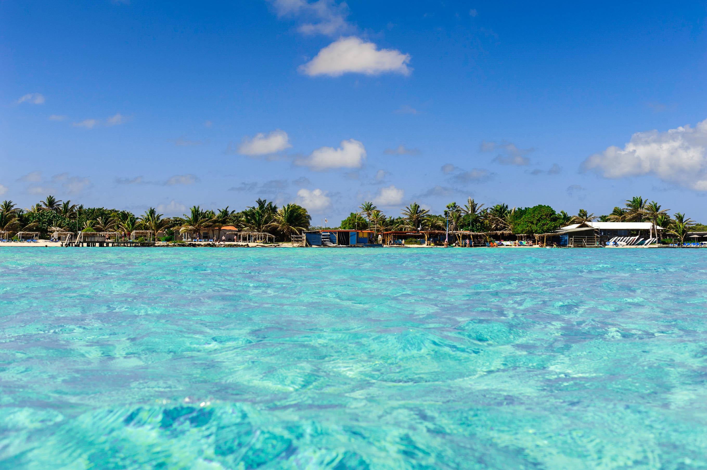 Paradise Island Amp