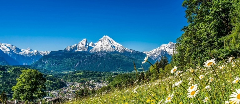 Bayerischer Wald Alpen