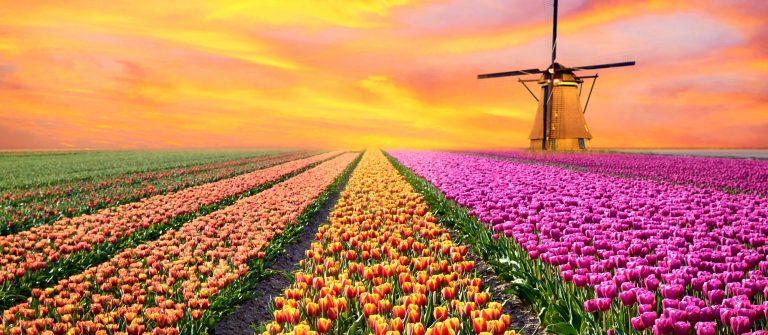 Netherlands_shutterstock_400062880