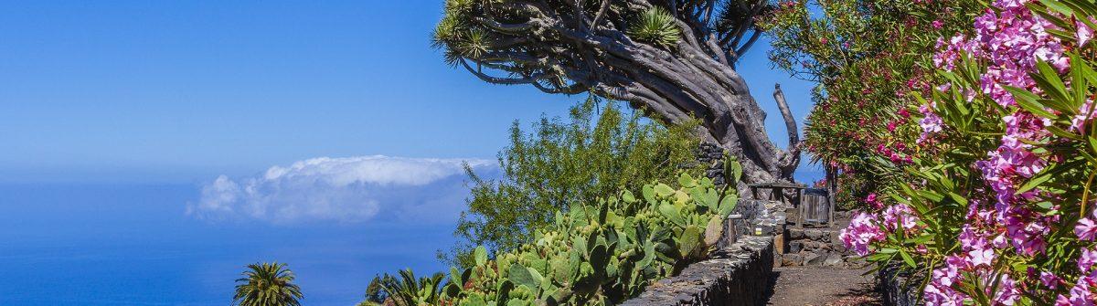 Glimpse of La Palma, Canary Islands