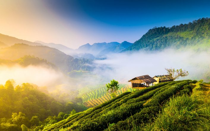Beautiful sunshine at misty morning mountains .