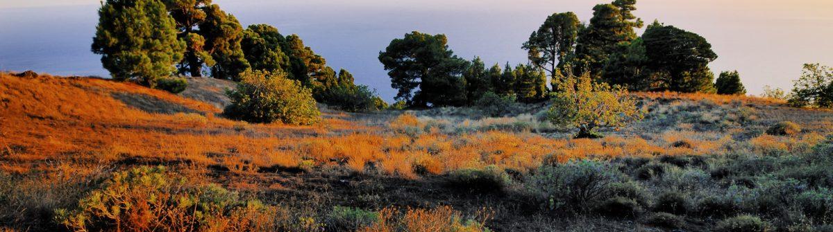 El Hierro Kanaren Landschaft