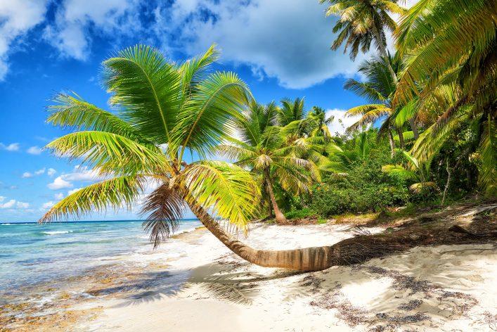 Saona Island Ausflug Dominikanische Republik