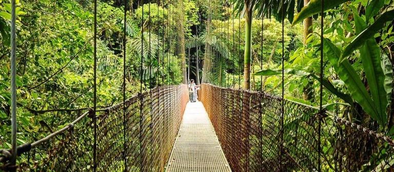 Hängebrücken in Costa Rica Arenal National Park iStock_11884737