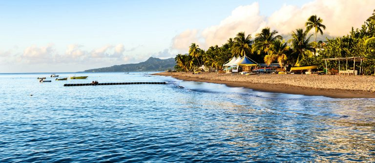 Tropical Caribbean Beach in Martinique
