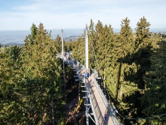 Scheidegg Skywalkpark. Panoramic structure of steel and wood built in the woods with beautiful mountain views_shutterstock_248111401_EDITORIAL ONLY_Mor65_Mauro Piccardi_klein