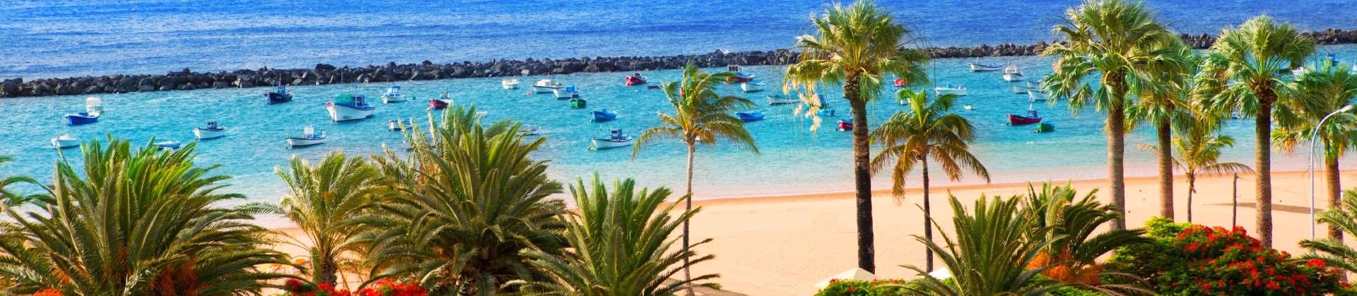 Beste reistijd Tenerife