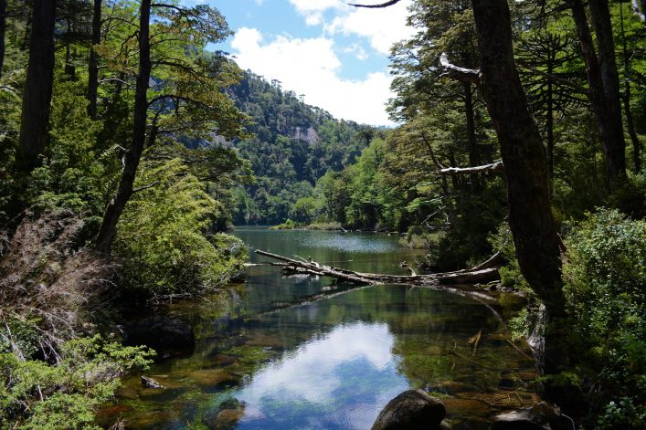 Huerquehue National Park, lake, chile, travel, tipps