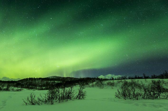 Polarlichter Schnee Nacht