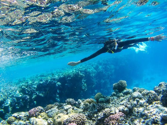 Schnorcheln im Roten Meer