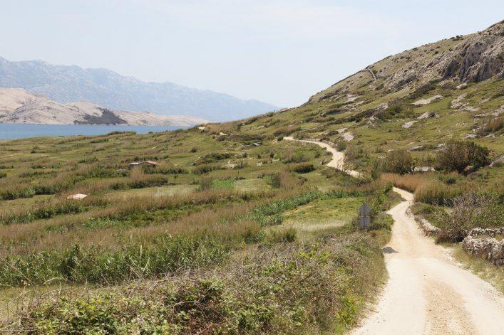 Ein Weg im Norden der Insel Rab.