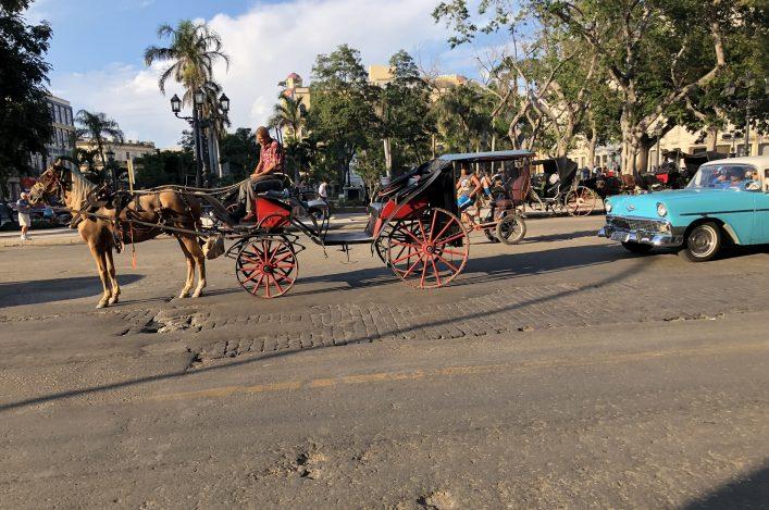 Kutschen und Oldtimer in Havanna Kuba