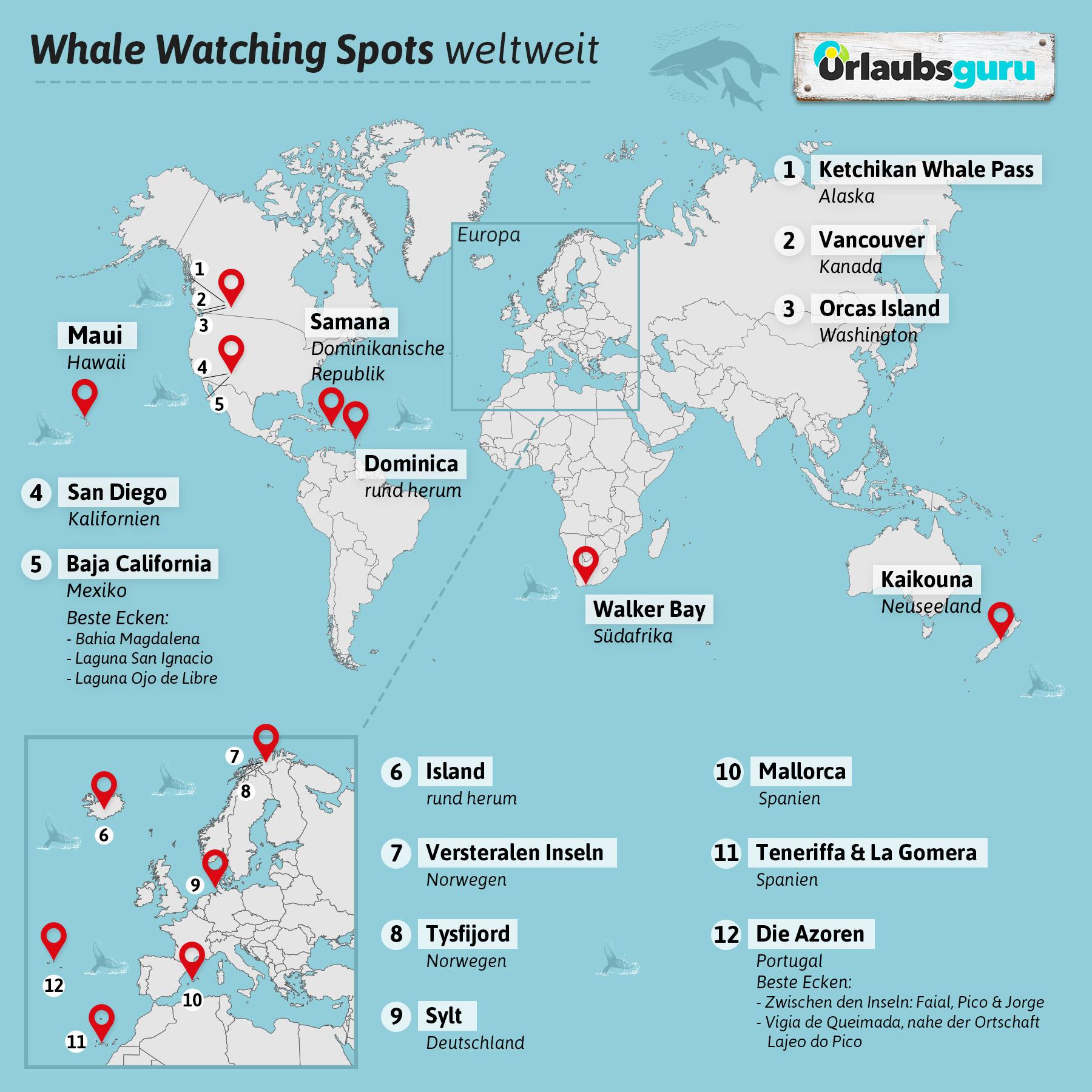Wo Leben Orcas