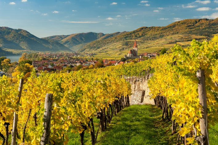 Weissenkirchen Wachau Austria in autumn colored leaves and vineyards on a sunny day shutterstock_738110848