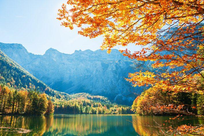 Yellow autumn trees on the coast of Hinterer Langbathsee lake in Austrian Alps shutterstock_745564768