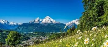Bayerischer-Wald-Alpen-shutterstock_318847859-2-768×335