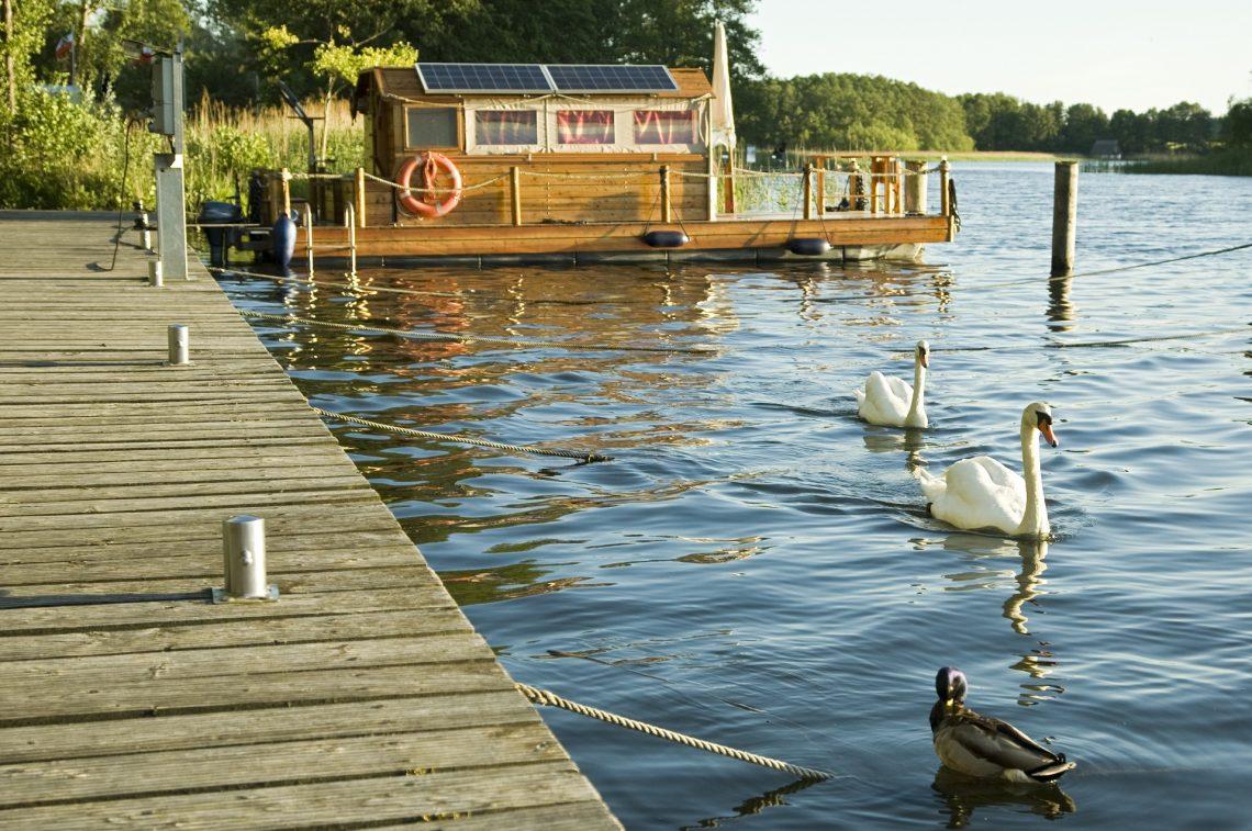 Idyll on the lake