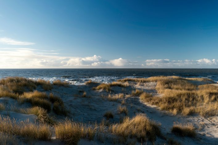 On the North Frisian Island Amrum in Germany shutterstock_797855203