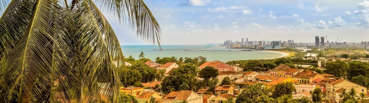 Olinda von oben mit Palme und Blick über die Stadt sowie Recife im Hintergrund