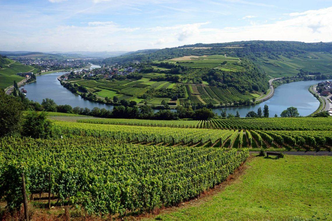 Moselregion in Rheinland-Pfalz
