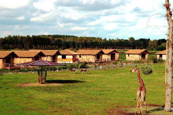 Ansicht der Masai-Mara-Lodges im Serengeti-Park