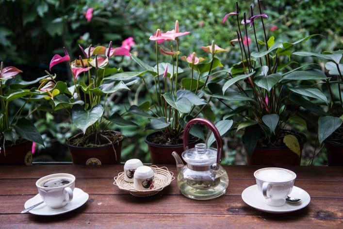 Tea and Coffee cups in front of garden