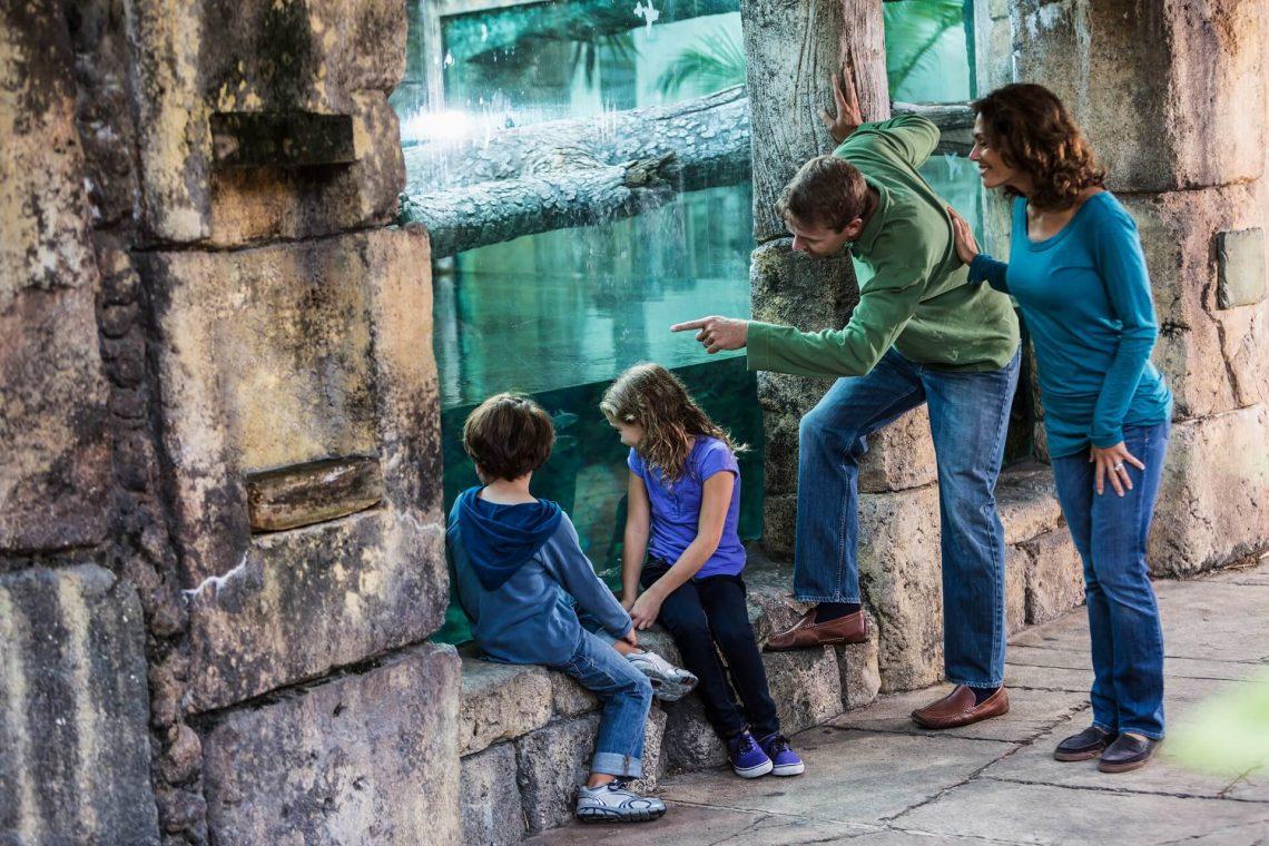 Familienausflug in den zoo iStock_29186414_XLARGE-2