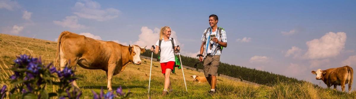 Wandern auf der Alm in Oststeiermark