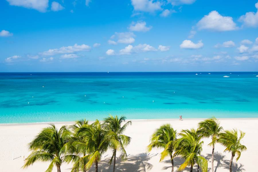 Elafonissi Strand mit Palmen