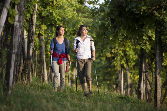 Genusswandern in der Oststeiermark