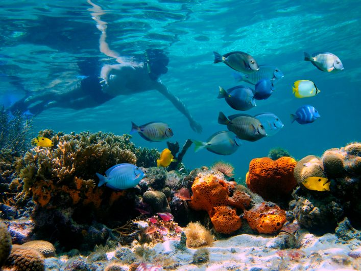 Punta Cana, Riff